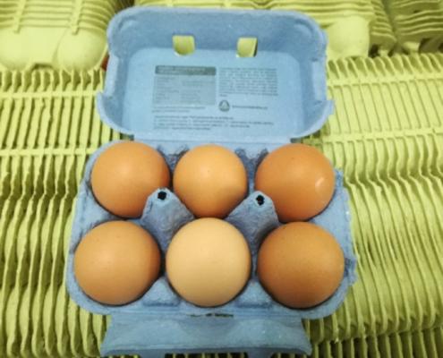 Čerstvá vejce 6 ks