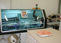 Moderní výroba vajec